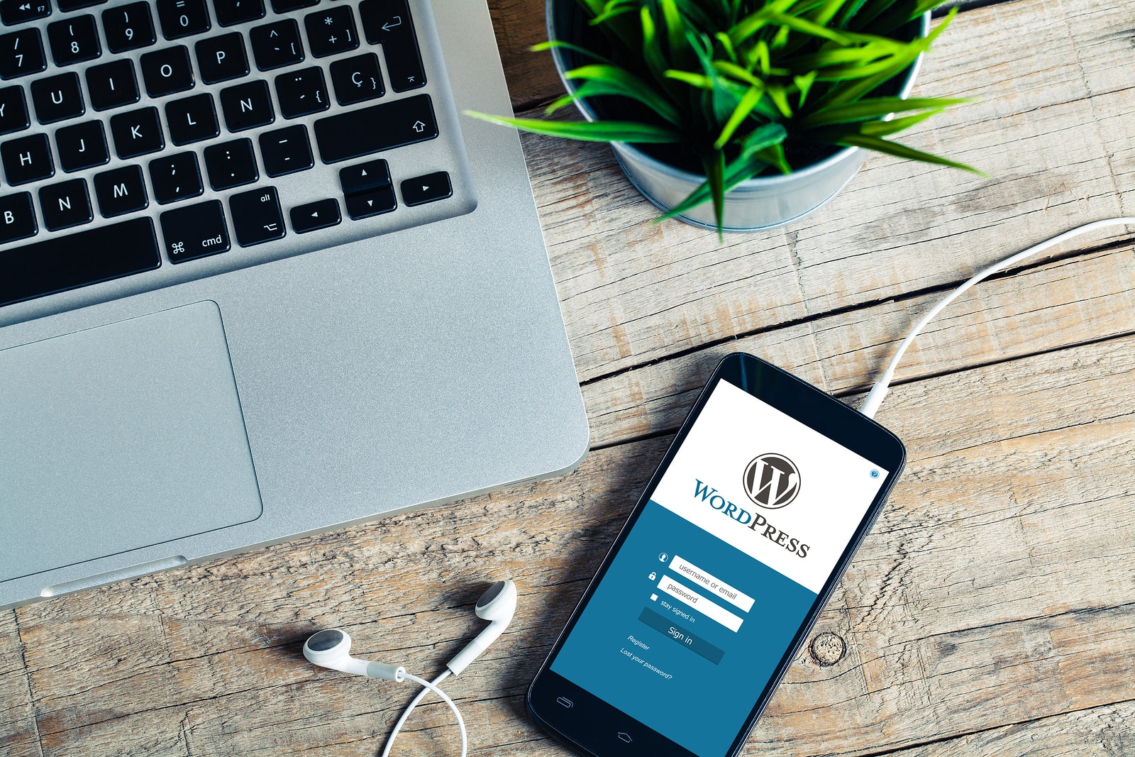 Three WordPress Plugins you should Invest in