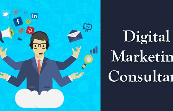 Get Benefits Appointing a Digital Marketing Consultant
