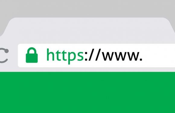What is an SSL certificate and how does it work?