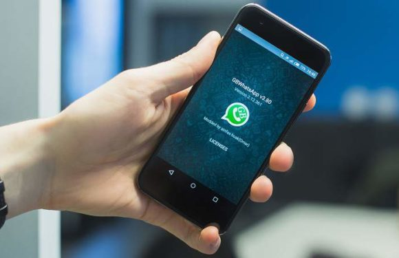 GBWhatsApp –  Everything you need to know [with download link]