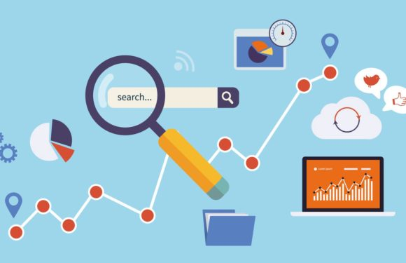 A Detailed Guide on How to Grow Traffic When You Are New to SEO
