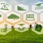 AI Can Enhance The Agriculture