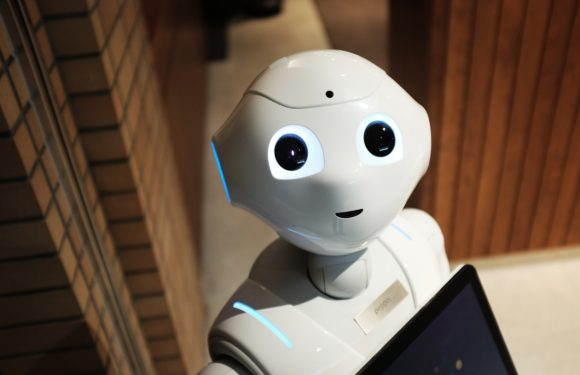 AI in the Public Sector, why it's worth the risk