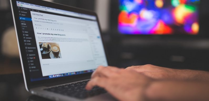 How to Reset Theme Settings in WordPress