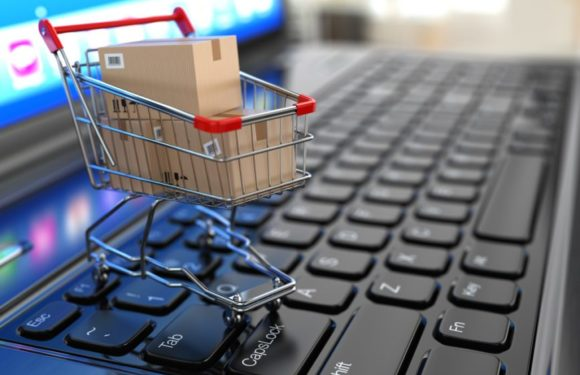 Learn To Build Your E-Commerce Website within 24 Hours