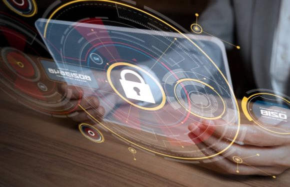 Digital Security: Ways to Secure Your Business from outsiders