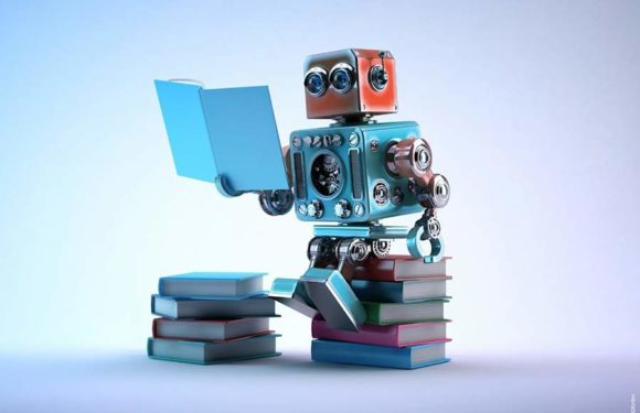 Are Learning Algorithms Really Essential for Becoming a Data Scientist?