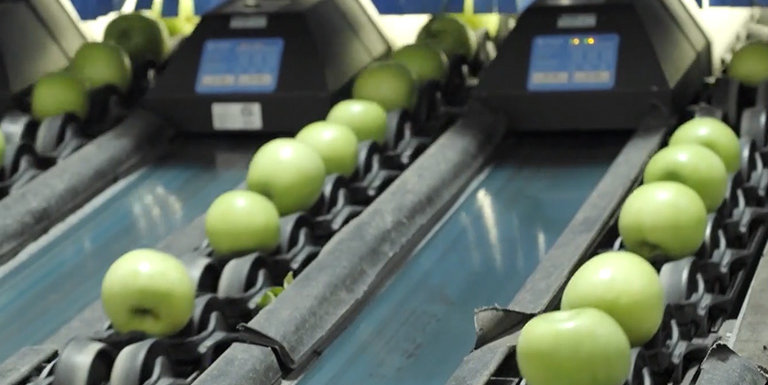 How a Fruit Sorting Machine Will Disrupt Industrial Automation