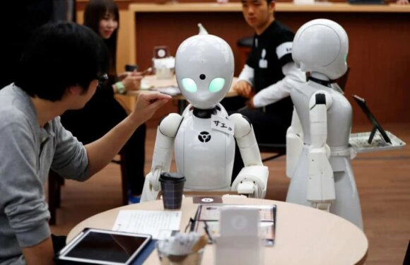 Top 10 Humanoid Robots That You Need to Look At