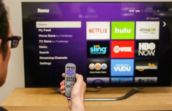 What Business Strategies did Hulu Adopt to Counter Netflix OTT App?
