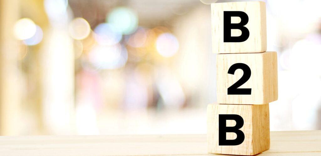 B2B Ecommerce Business